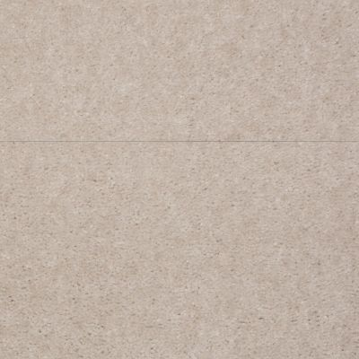 Shaw Floors Atherton Basic Beige 29105_52029