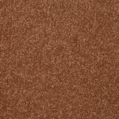 Shaw Floors Shaw Flooring Gallery Highland Cove III 12 Soft Copper 00600_5223G