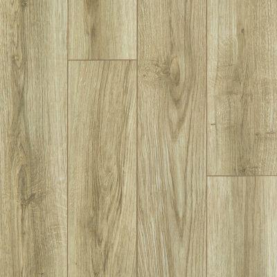 Shaw Floors SFA Sabine Hill Plus Rocco 00265_523SA