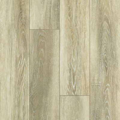 Shaw Floors SFA Sabine Hill Plus Vieste 00268_523SA
