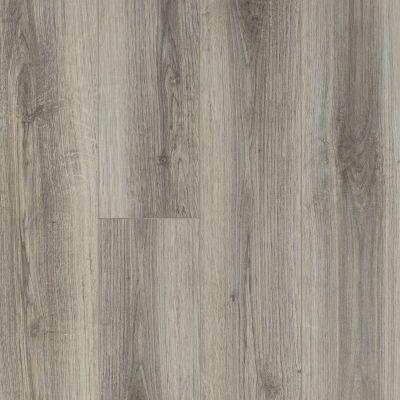 Shaw Floors SFA Sabine Hill Plus Lince 00571_523SA