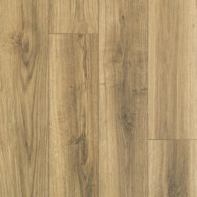 Shaw Floors SFA Sabine Hill Plus Tesora 07057_523SA