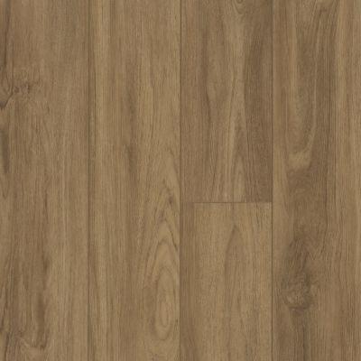 Shaw Floors SFA Antica HD Plus Santa Maria 07049_524SA