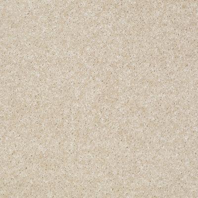Shaw Floors SFA Spartan Stucco 00105_52548