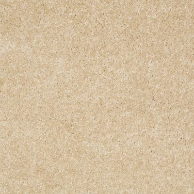 Shaw Floors SFA Spartan Toasted Coconut 00108_52548