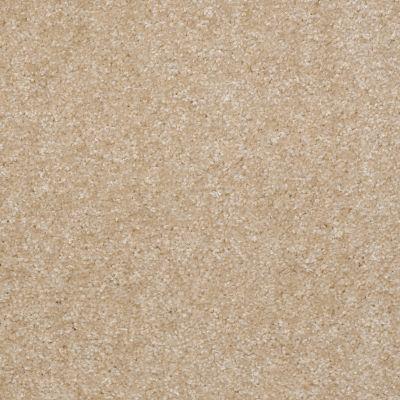 Shaw Floors SFA Spartan Saw Dust 00701_52548