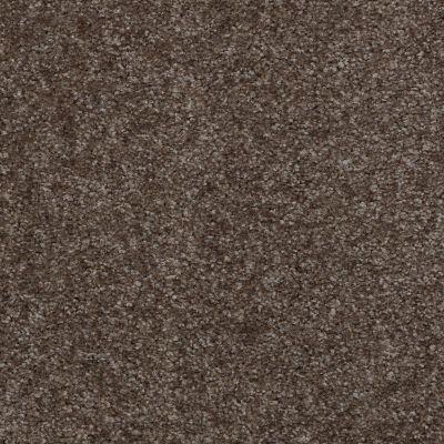 Shaw Floors SFA Spartan Kodiak Brown 00709_52548