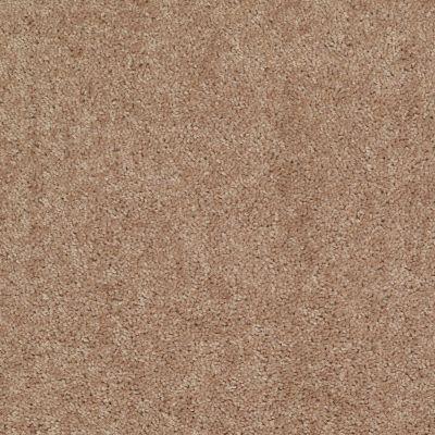 Shaw Floors Shaw Flooring Gallery Ellendale 12′ Eagles Nest 00704_5273G