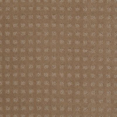 Shaw Floors Shaw Flooring Gallery Made To Be Yours Perfect Beige 00703_5282G
