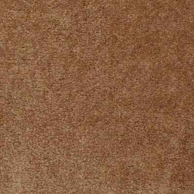 Shaw Floors Hawkeye II Roasted Pecan 00201_52A35