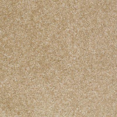Shaw Floors Shaw Floor Studio Textured Collection Leather 00700_52B69