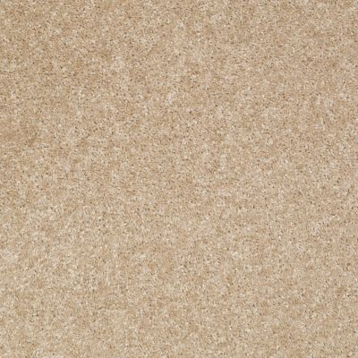 Shaw Floors Shaw Floor Studio Textured Collection Crisp Linen 00702_52B69