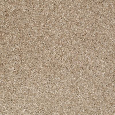 Shaw Floors Shaw Floor Studio Textured Collection Portabello 00706_52B69