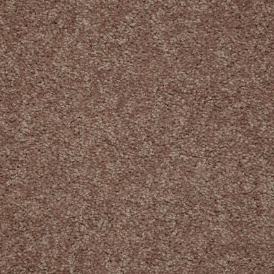 Shaw Floors Shaw Floor Studio Textured Story 15 Candied Truffle 55750_52B76