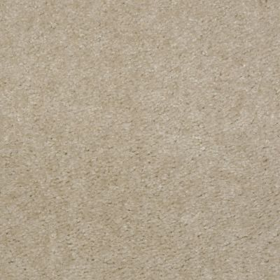 Shaw Floors This Is It Earth Beige 00118_52E51
