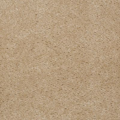 Shaw Floors This Is It Ermine Fur 00153_52E51