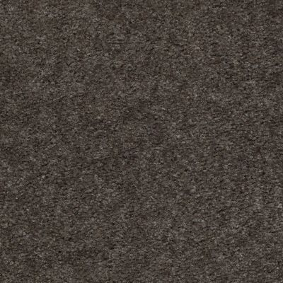 Shaw Floors This Is It Thunder Grey 00595_52E51