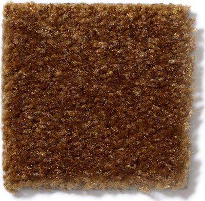 Shaw Floors This Is It Brown Sugar 00700_52E51