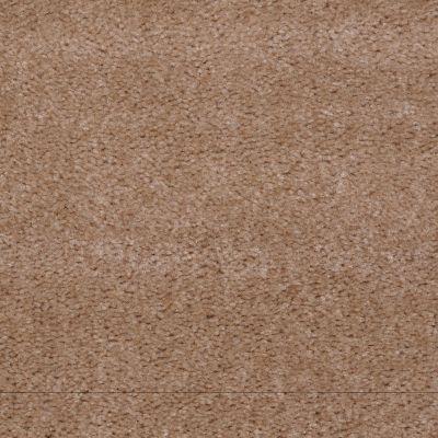 Shaw Floors This Is It Kansas Soil 00701_52E51