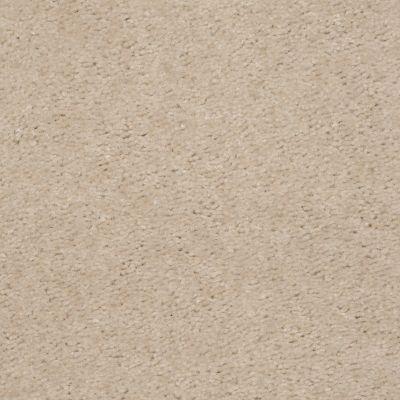 Shaw Floors SFA Flashy Doveshell 00115_52E55
