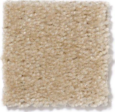 Shaw Floors SFA Flashy Ermine Fur 00153_52E55