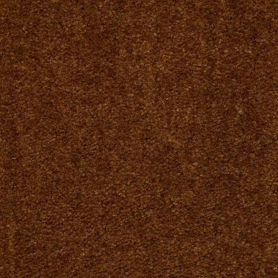 Shaw Floors SFA Flashy Brown Sugar 00700_52E55