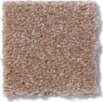 Shaw Floors SFA Flashy Kansas Soil 00701_52E55