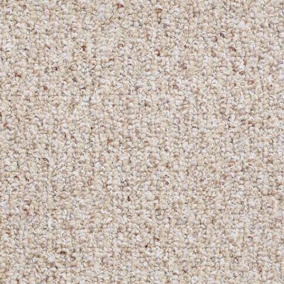 Shaw Floors Pure Waters 15 Sisal Weave 00200_52H11