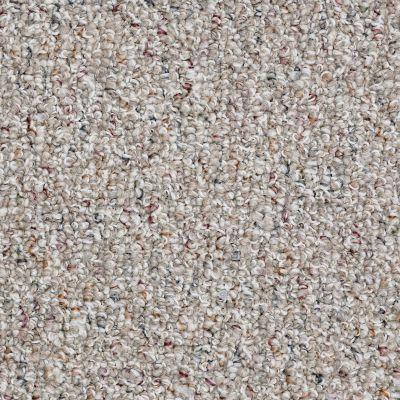 Shaw Floors Pure Waters 15 Tweed 00300_52H11