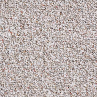 Shaw Floors SFA Riverknoll 15 Pebble Path 00701_52H71
