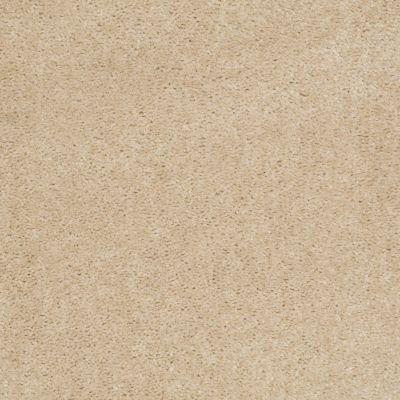 Shaw Floors This Is It Plus Venetian Tile 00106_52N08