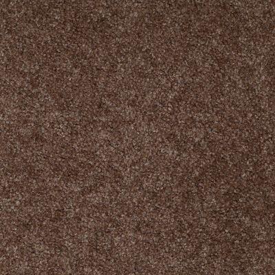 Shaw Floors This Is It Plus Coffee Bean 00704_52N08