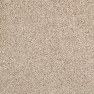 Shaw Floors This Is It Plus Rustic Taupe 96101_52N08
