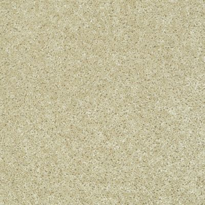 Shaw Floors Full Of Life Sand Pebble 00105_52N09