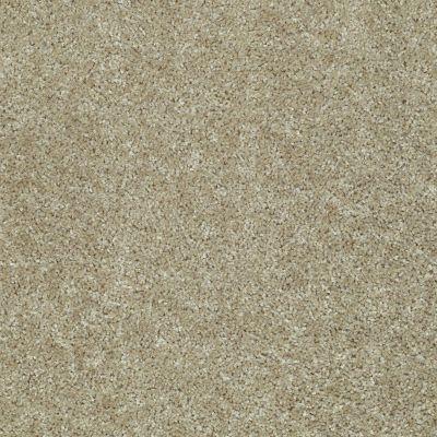 Shaw Floors SFA Kentfield Taupe Stone 00700_52N22