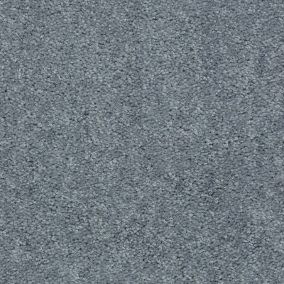 Shaw Floors SFA Hollywood Regency II 15′ Flannel 00511_52N92