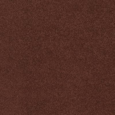 Shaw Floors Everyday Comfort (s) Magic Lantern 00601_52P07