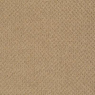 Shaw Floors Traditional Elegance Granola 00702_52P13