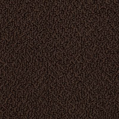 Shaw Floors Traditional Elegance Brown Sugar 00708_52P13