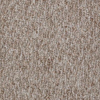 Shaw Floors Newmar 12′ Cozy Home 00700_52R24
