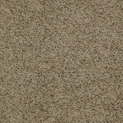 Shaw Floors Striker Desert Palm 00301_52R36