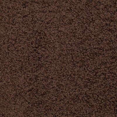 Shaw Floors Striker Dark Fudge 00701_52R36