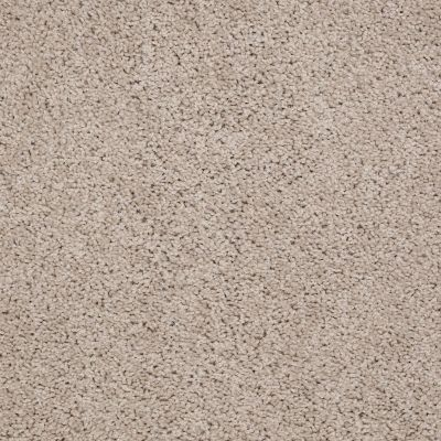 Shaw Floors Cardinal Soft Shell 00103_52R37