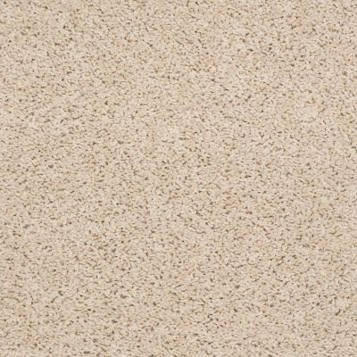 Shaw Floors Cardinal Custard 00104_52R37