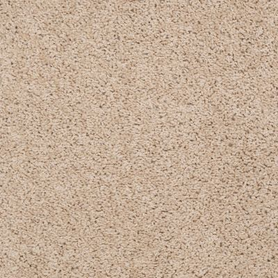 Shaw Floors Cardinal New Pastry 00105_52R37