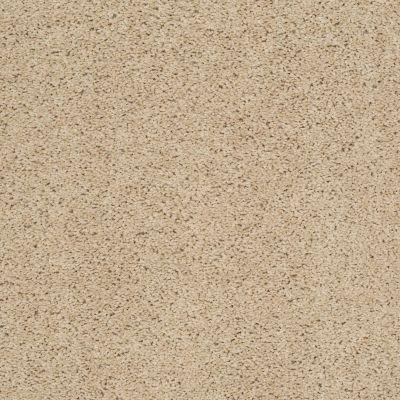 Shaw Floors Cardinal Wild Straw 00106_52R37