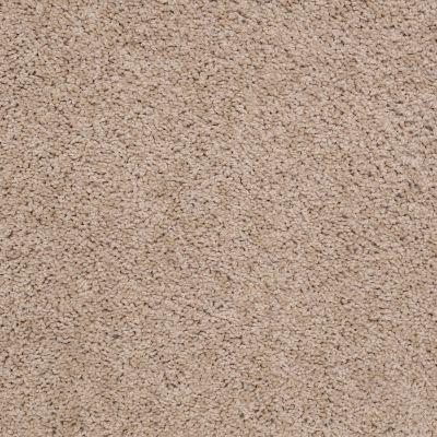 Shaw Floors Cardinal Fawn 00108_52R37