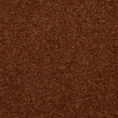 Shaw Floors Foundations Passageway I 15 Gingerbread 00602_52S23