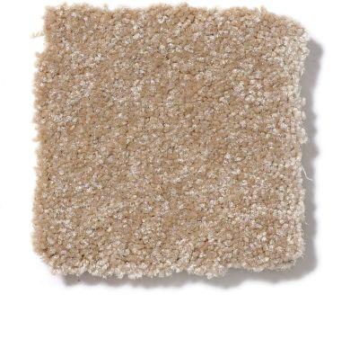 Shaw Floors Foundations Passageway I 15 Sea Grass 00700_52S23