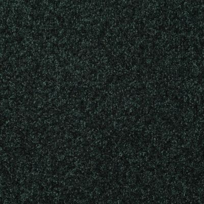 Shaw Floors Foundations Passageway II 12 Emerald 00308_52S24